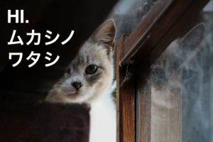 Photo by ARTP on Unsplash