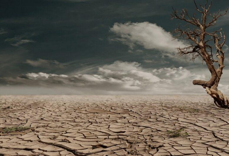 cracked-soil-on-desert
